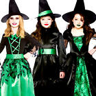 Wicked Witches Girls Fancy Dress Halloween Book Witch Kids Childrens Costume New