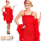 Red Jazzy Fringe Flapper 1920s 30s Fancy Dress Charleston Gatsby Womens Costume