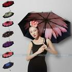 Compact Folding Windproof Anti UV/Rain Daisy Rose Flower Princess Women Umbrella