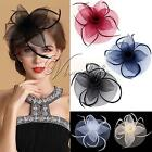 Wedding Party Race Game Headpiece Fascinator Flower Hair Clip Feather Headband