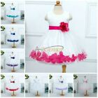 Flower Girl Easter Dress Party Wedding Bridesmaid Pageant Recital Graduation New