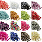 2000pcs Half Pearl Round Bead Flat Back 2-8mm Scrapbook for Craft FlatBack NEW