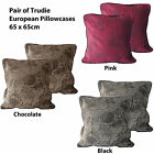 Pair of TOP QUALITY Jacquard Trudie European Pillowcases - BLACK CHOCOLATE PINK