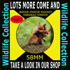 FOXES BABIES- PART OF OUR WILDLIFE COLLECTION 58 MM BADGE-FRIDGE MAGNET