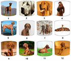 Rhodesian Ridgeback Design Lampshades Ideal To Match Rhodesian Ridgeback Cushion