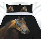 Dark Rider Brown Horse Quilt Doona Duvet Cover Set - Single Double Queen