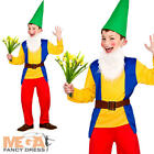 Funny Garden Gnome Boys Fancy Dress Elf Troll Kids Childs Book Character Costume