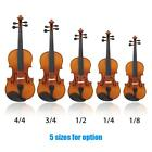 ammoon Violin Natural Acoustic Solid Wood for Beginner+Case+Rosin Gift A4S1
