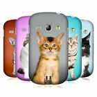 HEAD CASE DESIGNS POPULAR CAT BREEDS BACK CASE FOR SAMSUNG GALAXY FAME S6810