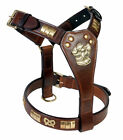 STAFFORDSHIRE LEATHER DOG HARNESS WITH KNOT IN 8 COLORS WITH BRASS FITTING