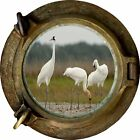 Huge 3D Porthole National Wildlife View Wall Stickers Mural Decal Wallpaper 231