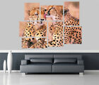Beautiful pair leopards Jungle Removable Self Adhesive Wall Picture Poster 1191