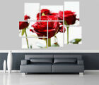 Red Roses in Bloom Flowers Removable Self Adhesive Wall Picture Poster 1221