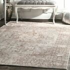 nuLOOM Traditional Vintage Silky Style Maryalice Area Rug in Beige Color