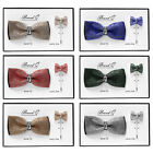 Brand Q Men's Crystal Shiny Fashion Bow Tie & Lapel Pin 2-Piece Set New in Box