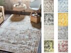 Oriental Persian Design Modern Carpet Contemporary Area Rug Transitional Style
