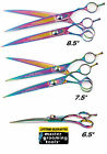 Master Grooming 440C ICE TEMPERED RAINBOW CURVED SHEARS SCISSORS Pet Grooming