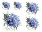 Shabby Hand Painted Blue Hydrangeas Furniture Transfers Waterslide Decals FL527