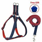 Dog Harness Medium with Heavy Duty Leash and ID Tag Step-in for Walking