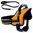 Control Harness for Dog Soft No Pull No Chock Adjustable Padded Vest Harness