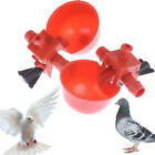 Birds Feeder Drinker Cup Water Bottle Drinking Bowl Poultry Pet Pigeon Feed Cup