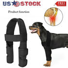 1 Pair Brace For Dogs Hock Protector ACL Therapeutic Dog Front Leg Elbow Straps