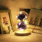 WR Eternal Rose Dipped In 24k Gold Glass Lamp Dome LED Light Gift Beauty&Beast A