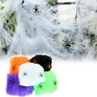 Halloween Scary Party Scene Props White Stretchy Cobweb Spider Web Horror Hallow