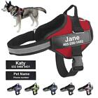 Premium Personalized ID Tag No Pull Reflective Breathable Adjustable Dog Harness